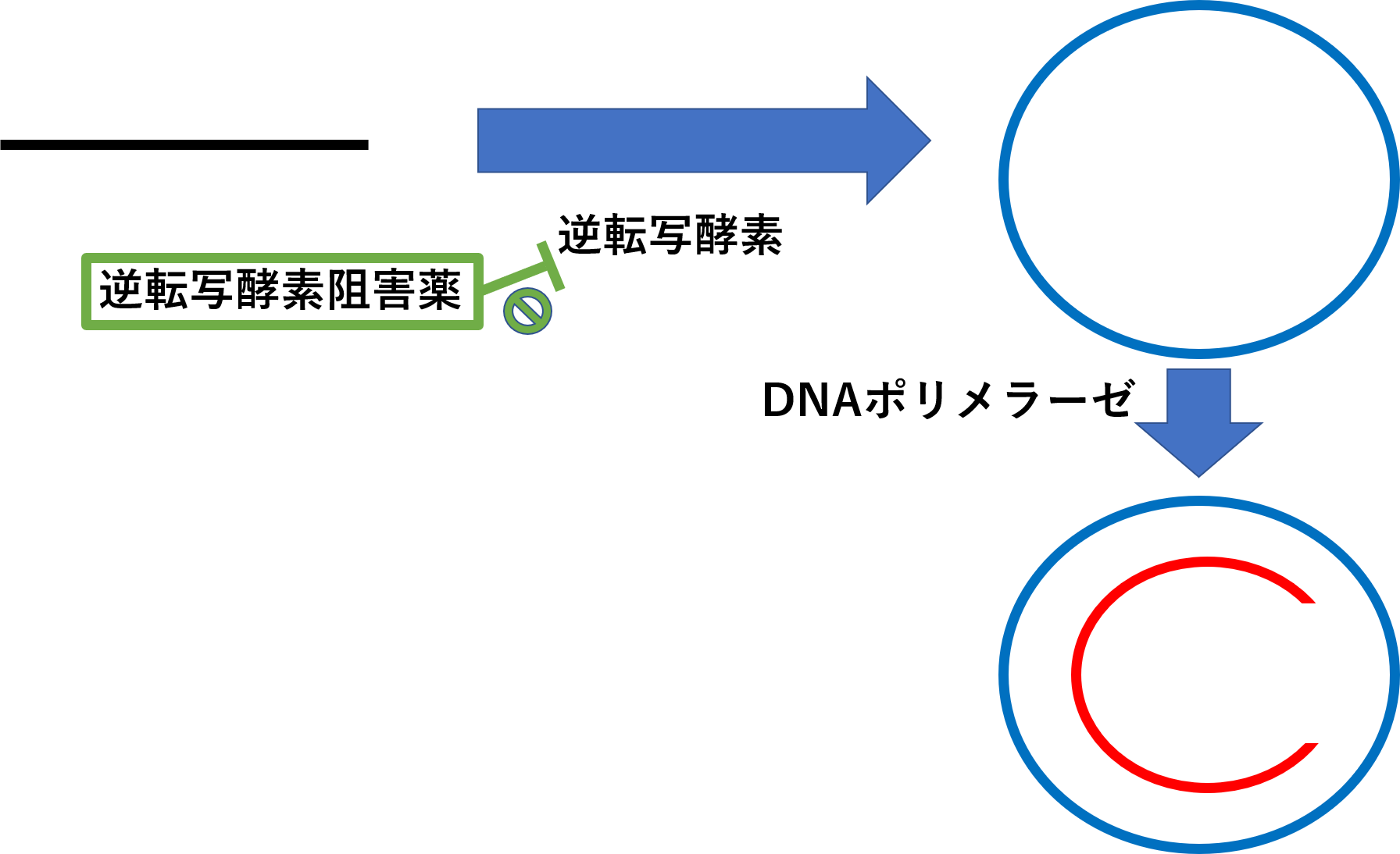B型肝炎治療薬の逆転写酵素阻害薬は逆転写を阻害する